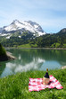 Picnic in Alpine meadow. Switzerland
