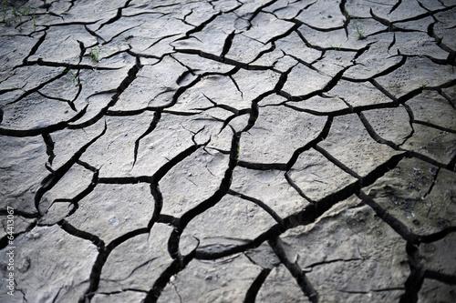 Desiccation cracks - 64413067