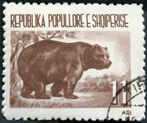 ALBANIA - 1961: shows Brown bear