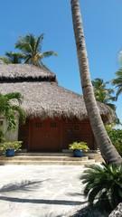 cabaña rustica en el caribe
