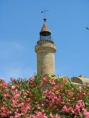 La Tour de Constance, Aigues-Mortes