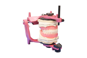 False teeth prosthesis