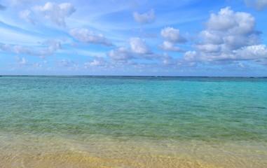 Tropical Beach Landscape