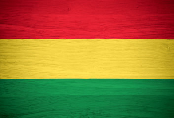 Bolivia flag on wood texture