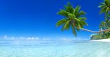 Beautiful Tropical Paradise - 64426294