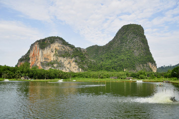 Pinnacles near Phangnga