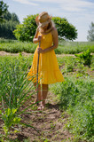 Barefoot woman with  hat grub weed in garden poster