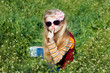 small girl with sunglasses with fingers at lips