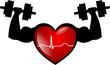 Muskel Herz EKG