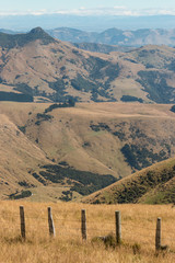 grassy hills at Banks Peninsula, New Zealand
