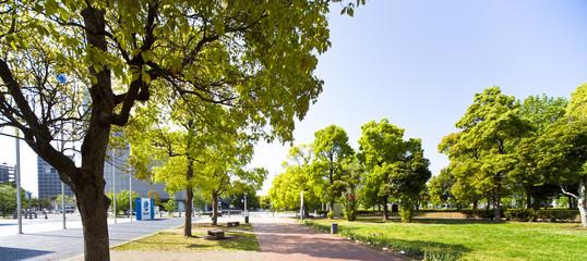 日本科学未来館横の遊歩道