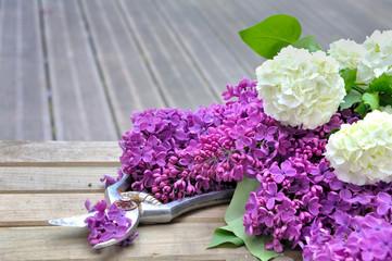 fleurs de lilas fraîchement cueillies