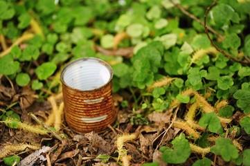 Small tin