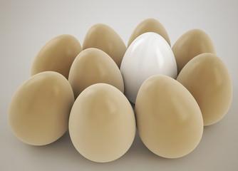 a white egg