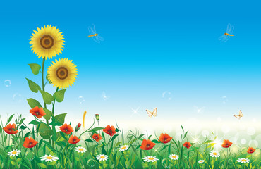 Floral design on a blue sky background