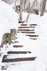 Snowy stairs in the forest