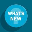 new blue flat web icon