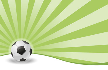 Soccer Field Ball
