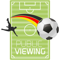 Public Viewing Soccer Field