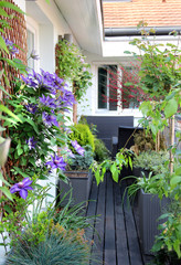 Beautiful modern terrace with a lot of flowers