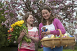 Easter eggs and Spring flowers Girls holding