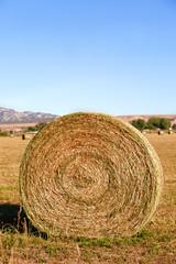 round golden hay bale on farmland