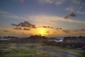 Sunset guernsey