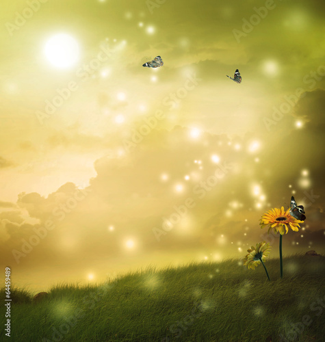 Staande foto Heuvel Yellow gerberas with butterflies in a fantasy hill
