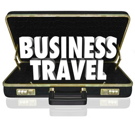 Business Travel Briefcase Words Important Meeting