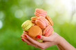 The heap of Macaroons in the hand on blurred green background