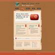 Website template in retro design