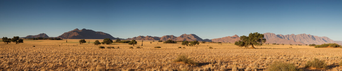 Panorama of the Namib desert