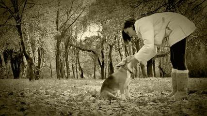 Old Film Effect: Give me five paw my dear Friend