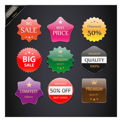 Collection of Premium Quality Labels with Glossy styled design.