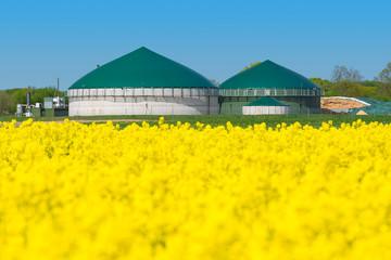 Biogasanlage am Rapsfeld - 1675