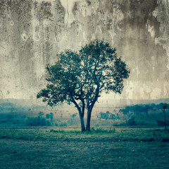 A single tree represent loneliness and sadness
