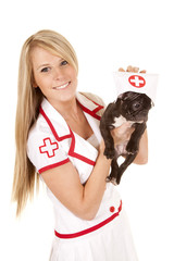 nurse with small dog hold with hat