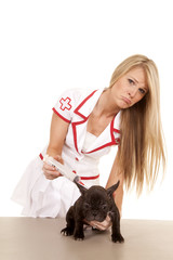 nurse with small dog needle sad