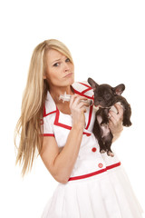 nurse with small dog sad giving shot