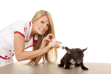 nurse with small dog shot with big needle