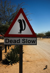 Squirrel Warning Sign with Squirrel, Solitaire, Namibia