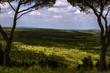 Parco Alta Murgia: vista panoramica. - (Puglia) ITALIA -