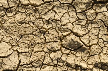 Verbrannte Erde Dürre