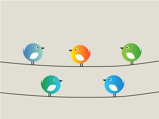Five birds blue