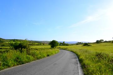 Panorama con strada e prati