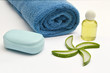 spa product made of aloe Vera