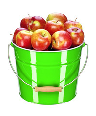 apple bucket