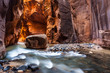Leinwanddruck Bild - Wall street in the Narrows, Zion National Park, Utah