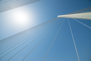 Details of a cable stayed bridge.