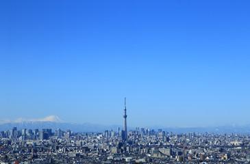 東京都心の風景 富士山とスカイツリーと青空